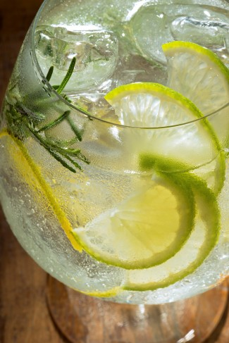 Drinks | Rosemary Tonic_Bendita Vodka